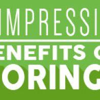 Drumstick Tree: The Many Benefits of Moringa Oleifera- Infographic