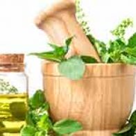 Choose Basil Oil For Healthy Skin And Hair