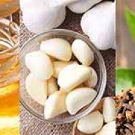 5 Natural Antibiotics To Combat Infections