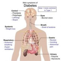 Do Diabetics Have To Worry About Heart Disease?