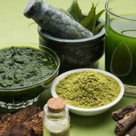 Nature's Gift: Make The Most Of Neem's Benefits