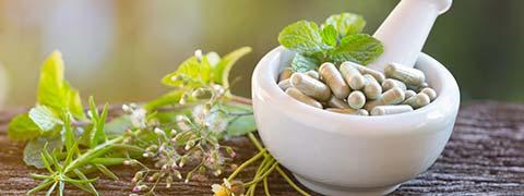 Medhya Rasayana: Benefits Of These Incredible Ayurvedic Herbs To Improve Cognitive Abilities