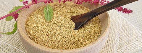 Amaranth - The Magic Seed For Good Health