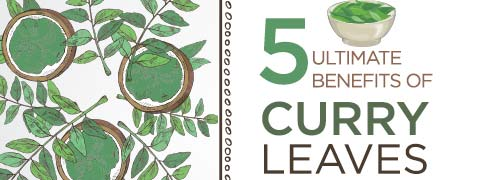 5 Awesome Benefits Of Humble Curry Leaves-Infographic