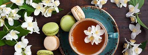 Jasmine: 5 Astonishing Benefits Of Adding This Incredible Flower To Your Diet