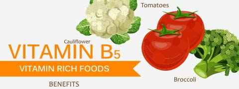 Vitamin B5: Functions, Food Sources, Deficiencies and Toxicity