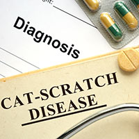 Cat Scratch Disease/Lymphoreticulosis: Causes, Symptoms And Treatment