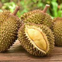 Durian Fruit: Health Benefits, Nutrition, Uses For Skin And Hair, Recipes, Side Effects