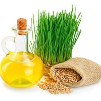 Wheat Germ Oil: Nature's Very Own All-Rounder For Enhanced Health, Fitness And Beauty