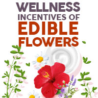 Edible Flowers: Incredible Health Benefits Of Adding These Blossoms To Your Diet - Infographic