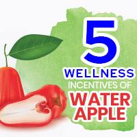 Water Apple: Discover The Phenomenal Health Benefits Of This Tropical Fruit - Infographic