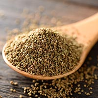 Celery Seed: 5 Astonishing Health Reasons Of Adding This Nutrient-Dense Seed In The Diet