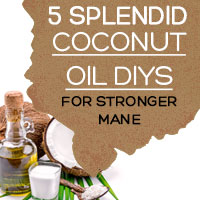 Coconut Oil: 5 Amazing Coconut Oil DIY Recipes For Lustrous And Healthier Hair-Infographic