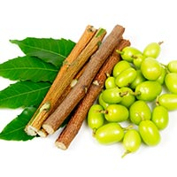Neem: Benefits, Uses, Formulation, Ingredients, Dosage And Side Effects