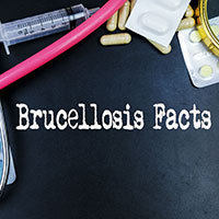 Brucellosis: Causes, Symptoms And Treatment