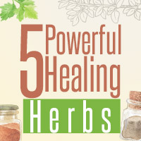 5 Mighty Healing Herbs That Promote Overall Health-Infographic