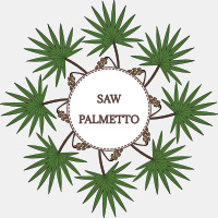 Saw Palmetto: 5 Splendid Wellness Incentives Of This Herbal Formulation