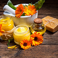 Calendula: Impressive Benefits Of This Flowering Plant For Radiant Skin And Glossy Hair