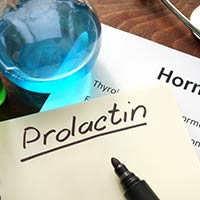 Prolactin: Structure, Crucial Functions, Adverse Effects