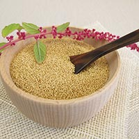 Amaranth - The Magic Seed For Good Health