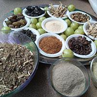 Brahma Rasayana: Benefits, Ingredients, Method, Dosage And Side Effects