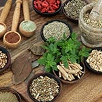 5 Herbs For A Healthy Digestive System