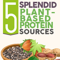 5 Marvelous Plant -Based Protein Sources For Overall Health- Infographic
