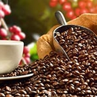 Coffee Compounds May Reduce Risk Of Prostate Cancer