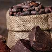 Eating Cocoa May Boost Your Vitamin D Intake: Study