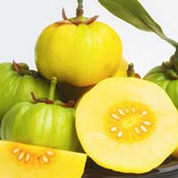 Garcinia Cambogia: Weight Loss Supplements, Health Benefits, Medicinal Properties And Side Effects