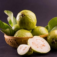 Guava —the top fruit for optimum health