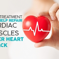 New Treatment May Help Repair Cardiac Muscles After Heart Attack