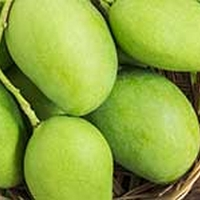 6 Amazing Health Reasons To Eat Raw Mango Every Day