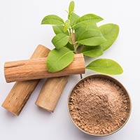 Sandalwood Powder /Oil: Ayurvedic Uses, Medicinal Benefits For Skin, Hair And Health