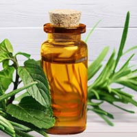 Tea Tree Oil: 5 Health Benefits of This Incredible Essential Oil