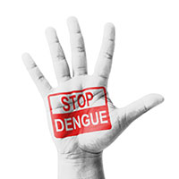 National Dengue Day: 5 Ways To Prevent This Deadly Fever