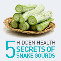 5 Fantastic Health Benefits Of Adding Snake Gourd To Daily Diet - Infographic