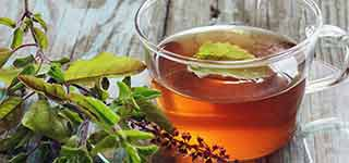 Little Known Benefits Tulasi for Health & Beauty