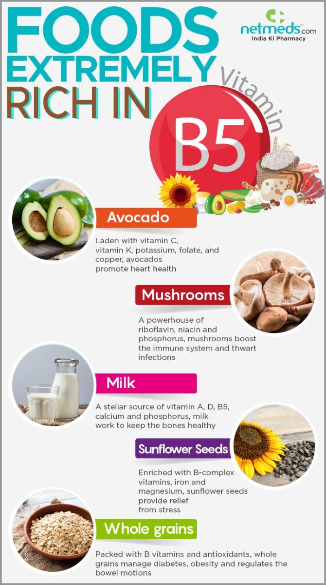 vitamin B5 infographic
