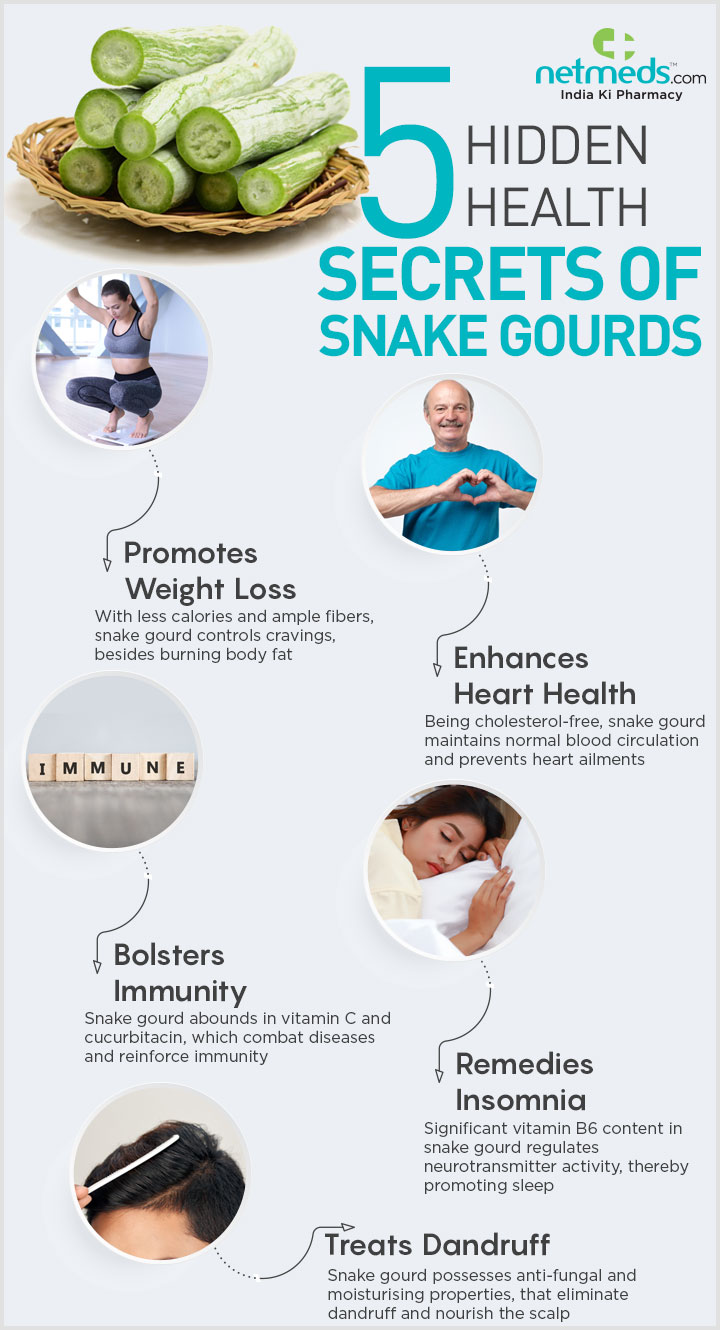 Snake gourd health benefits infographic