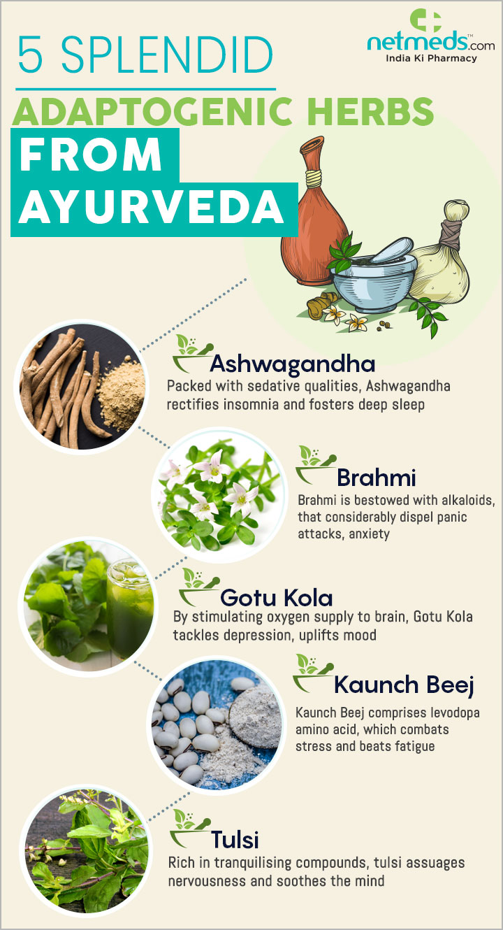5 Splendid Adaptogenic Herbs From Ayurveda