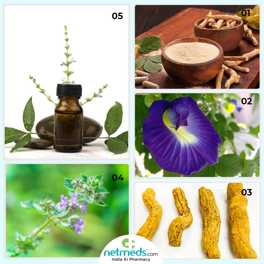 Ayurveda For Sleep Apnea Natural Remedies