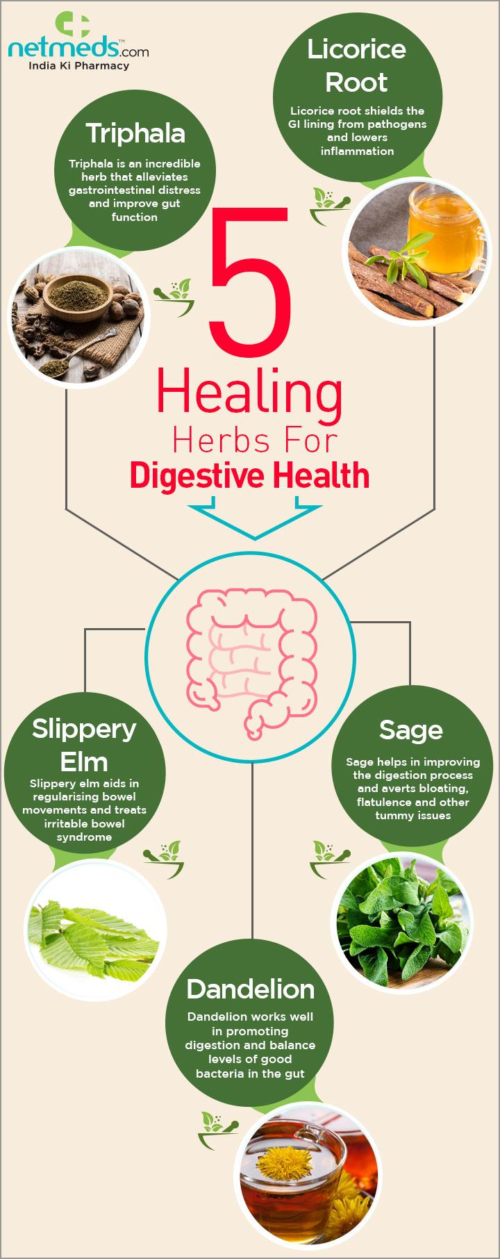 5 healing herbs for digestive health