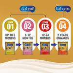 Enfamil Infant Formula - A+ Stage 1 (0 - 6 Months) 800 gm