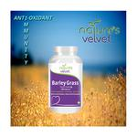 Natures Velvet Lifecare Barley Grass Powder 100 gm