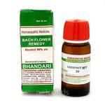 Bhandari Bach Flower Chestnut Bud 30 Liquid 30 ml