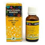 New Life Bach Flower Chestnut Bud 30 Liquid 30 ml