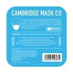 Dettol Cambridge Pro N99 Anti-Pollution Mask - Newton (L)