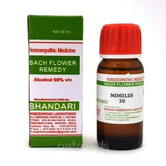 Bhandari Bach Flower Mimulus 30 Liquid 30 ml