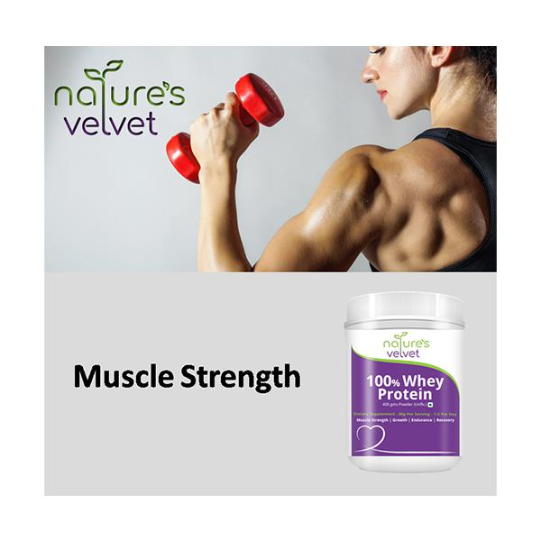 Natures Velvet 100 % Whey Protein Powder 400 gm